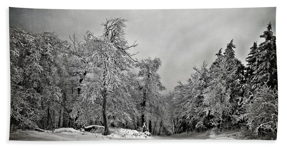 Snow Hand Towel featuring the photograph Break In The Storm by Lois Bryan