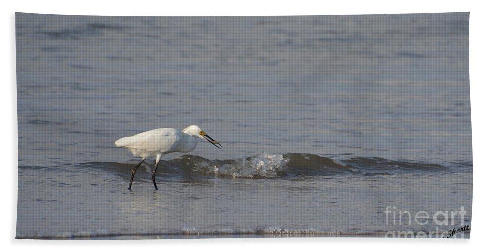 Heron Hand Towel featuring the photograph Breakfast by Aaron Shortt