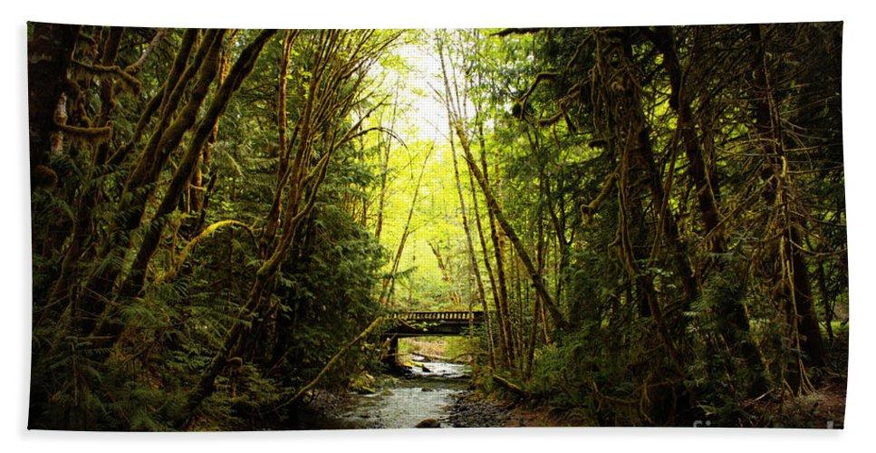 Rainforest Bath Sheet featuring the photograph Bridge In The Rainforest by Carol Groenen