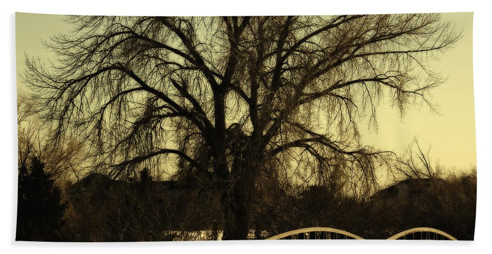 Bridge Bath Sheet featuring the photograph Bridge to Tree by Marilyn Hunt