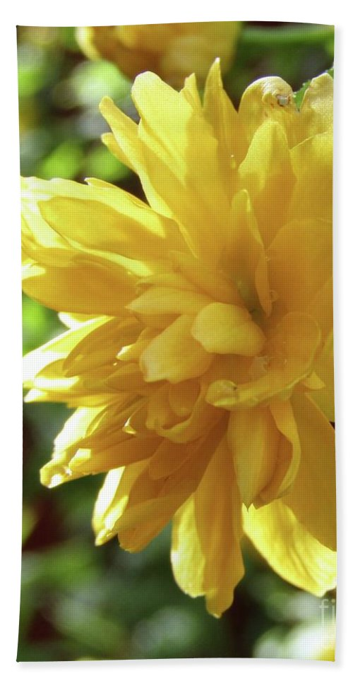 Bright Yellow Hand Towel featuring the photograph Bright As Yellow by Kim Tran