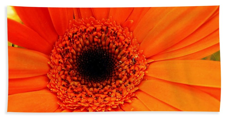 Flower Bath Towel featuring the photograph Bright Red by Rhonda Barrett