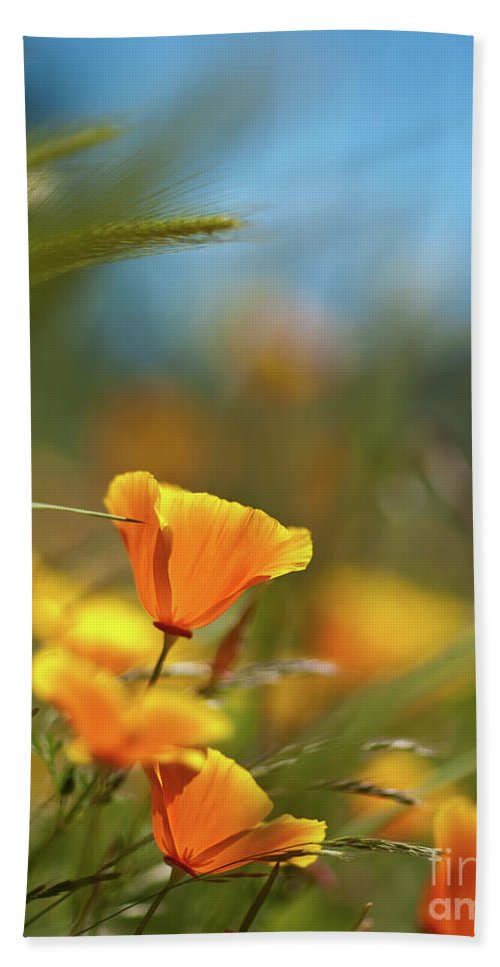 Sunny Bath Sheet featuring the photograph Bright Sunny Day by Mike Reid
