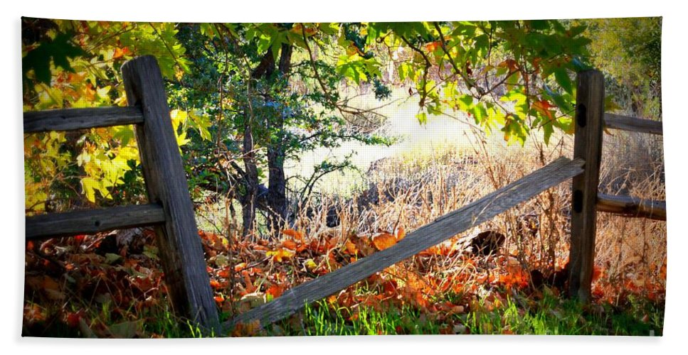 Autumn Hand Towel featuring the photograph Broken Fence In Sycamore Park by Carol Groenen