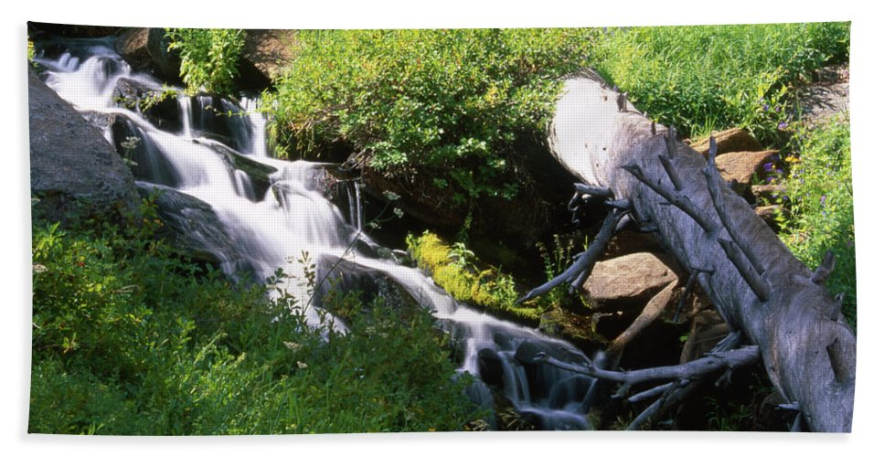 Golden Trout Wilderness Bath Sheet featuring the photograph Brook And Deadfall by Soli Deo Gloria Wilderness And Wildlife Photography