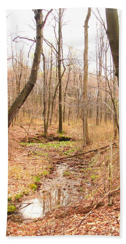 Landscape Hand Towel featuring the photograph Brook In The Woods by Penny Neimiller