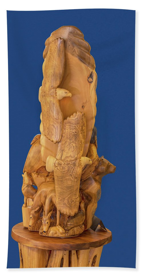 Wood Statues Bath Sheet featuring the photograph Brother, Carved Out Of A Dead Tree By Scott Alan Malinsky In Twin Lakes, Colorado  by Bijan Pirnia