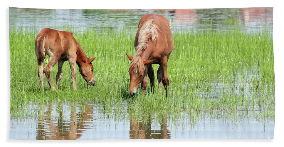 Horse Hand Towel featuring the photograph Brown Horse And Foal Nature Spring Scene by Goce Risteski