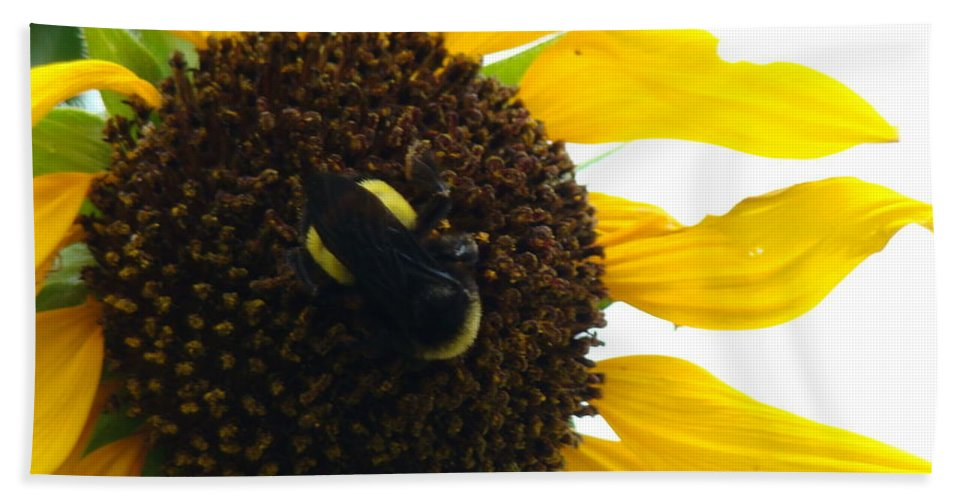 Bumble Bee Hand Towel featuring the pyrography Brunch by Terry Anderson
