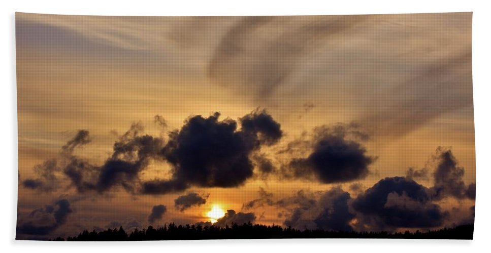 Scenic Hand Towel featuring the photograph Brush Stroke by Stacie Gary