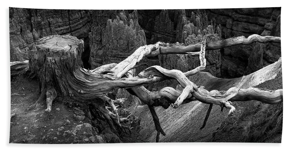 Art Bath Sheet featuring the photograph Bryce Canyon Tree Stump On A Ridge by Randall Nyhof