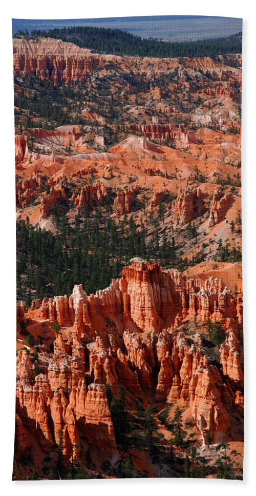 Photography Hand Towel featuring the photograph Bryce Canyon Vertical by Susanne Van Hulst
