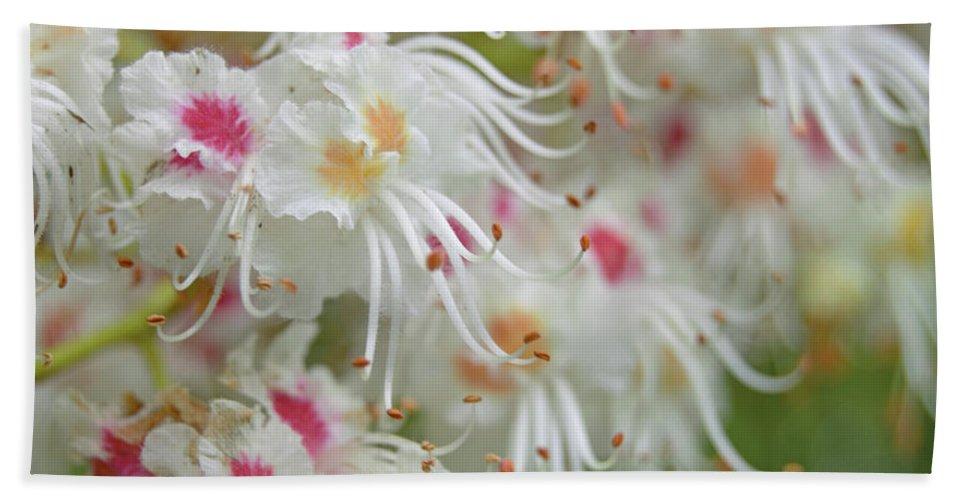 Flower Bath Sheet featuring the photograph Ohio Buckeye Blooms by Karen Sturgill