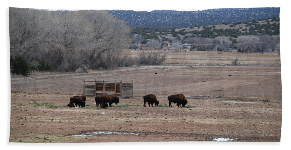 Buffalo Bath Towel featuring the photograph Buffalo New Mexico by Rob Hans