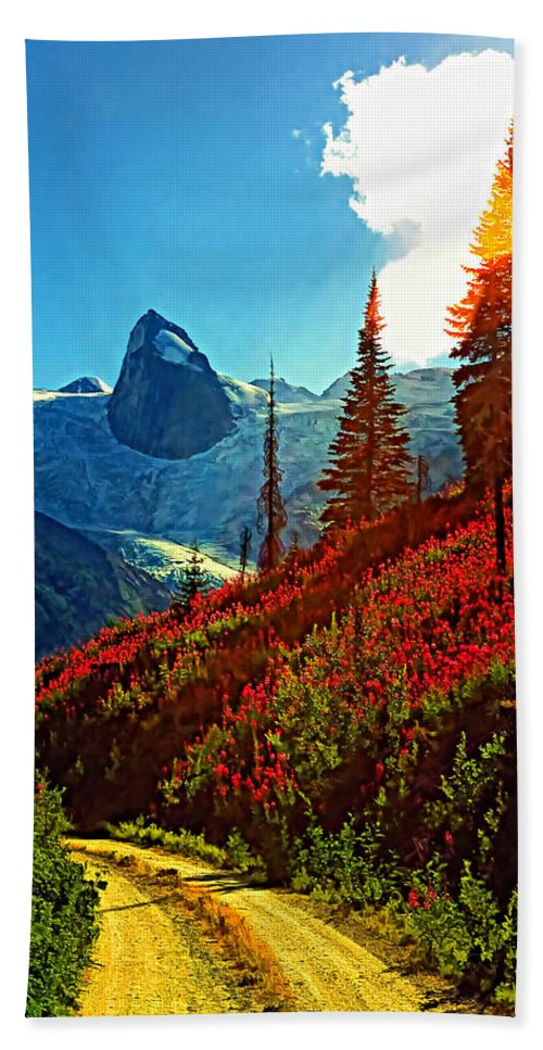 Mountains Hand Towel featuring the photograph Bugaboos Evening Buzz by Steve Harrington