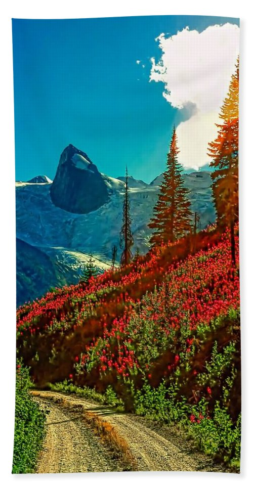 Mountains Hand Towel featuring the photograph Bugaboos Evening by Steve Harrington