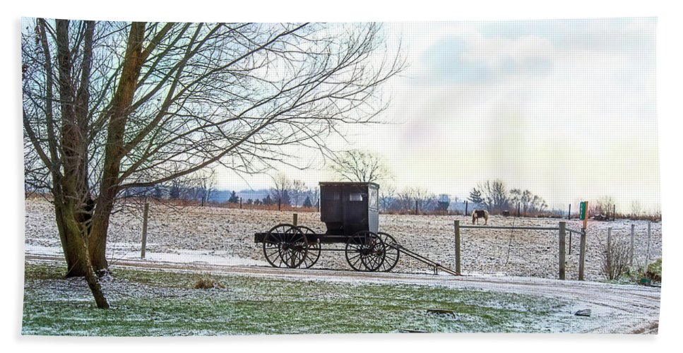 Amish Buggy Hand Towel featuring the photograph Buggy Alone In Winter by David Arment