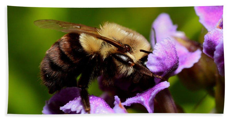 Bumblebee Bath Sheet featuring the photograph Bumblebee by Roberto Aloi