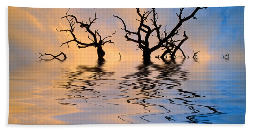 Original Art Bath Sheet featuring the photograph Slowly Sinking by Jerry McElroy
