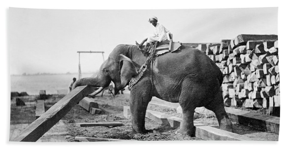 20th Century Bath Sheet featuring the photograph Burma: Elephant by Granger
