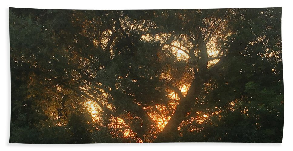 Burning Bush Hand Towel featuring the photograph Burning Bush by Amy Lionheart