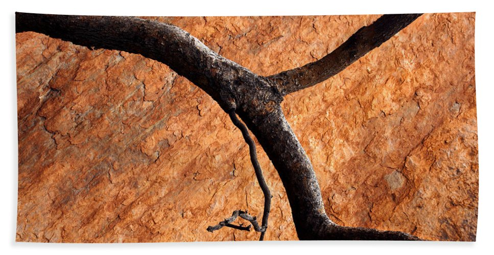 Gum Tree Bath Sheet featuring the photograph Burnt Orange by Mike Dawson