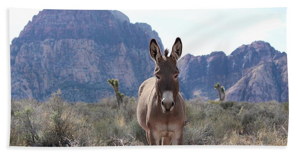 Red Bath Sheet featuring the photograph Burro by Nicholas Miller