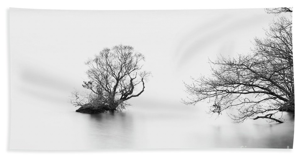 Crummock Water Hand Towel featuring the photograph Bush Study - Crummock Water by Tony Higginson