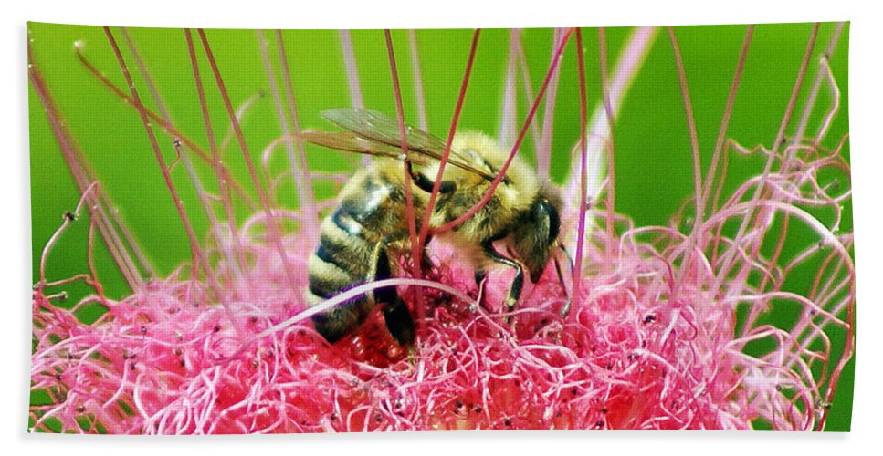 Nature Bath Towel featuring the photograph Busy Bee by Holly Kempe
