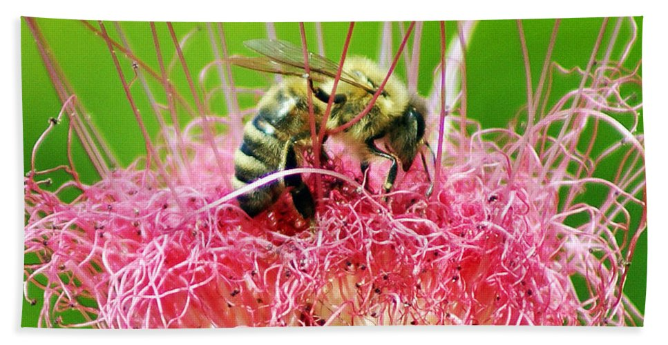 Nature Hand Towel featuring the photograph Busy Bee by Holly Kempe