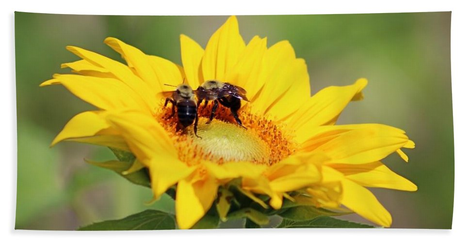 Sunflower Hand Towel featuring the photograph Busy Bees by Gayle Miller
