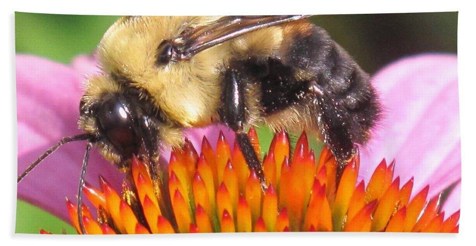 Bee Bath Sheet featuring the photograph Busy by Ian MacDonald