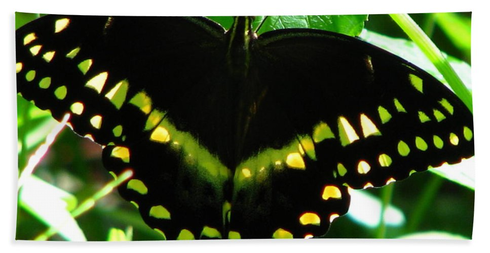 Patzer Bath Sheet featuring the photograph Butterfly Art 3 by Greg Patzer