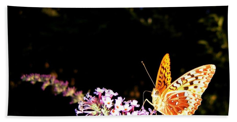 Butterfly Hand Towel featuring the photograph Butterfly Banquet 1 by Will Borden