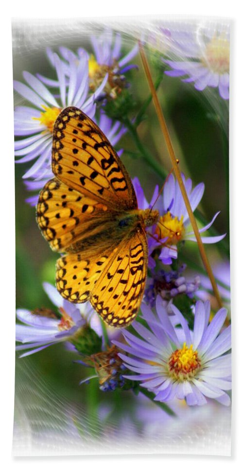 Butterfly Hand Towel featuring the photograph Butterfly Bliss by Marty Koch