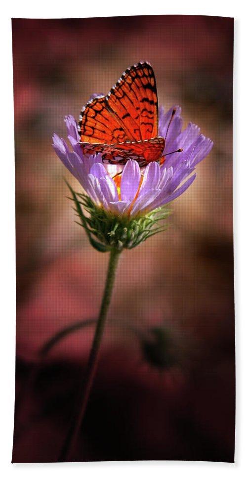 Butterfly Bath Sheet featuring the photograph Butterfly by Chris Brannen