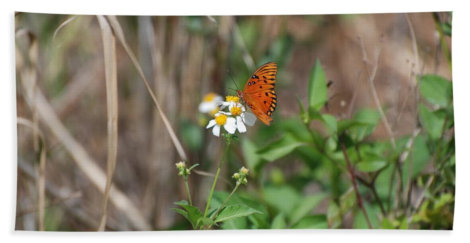 Butterfly Bath Sheet featuring the photograph Butterfly Flower by Rob Hans