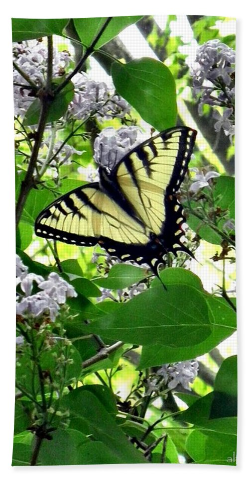 Butterfly Hand Towel featuring the photograph Butterfly In The Lilac No. 1 by T Cook
