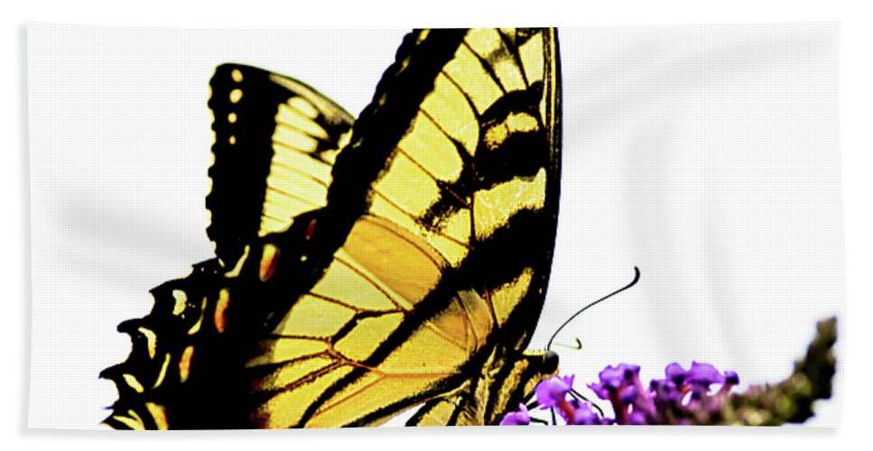 Butterfly Hand Towel featuring the photograph Butterfly by Julie Niemela