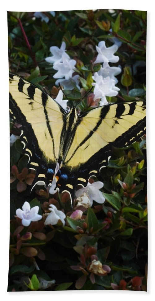 Butterfly Hand Towel featuring the photograph Butterfly by Kelley King