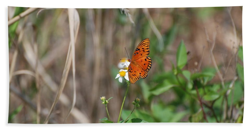 Nature Hand Towel featuring the photograph Butterfly On Flower by Rob Hans