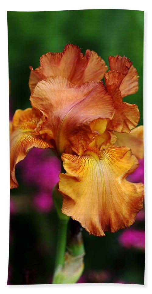 Iris Bath Sheet featuring the photograph Butterscotch And Pink by Debbie Oppermann