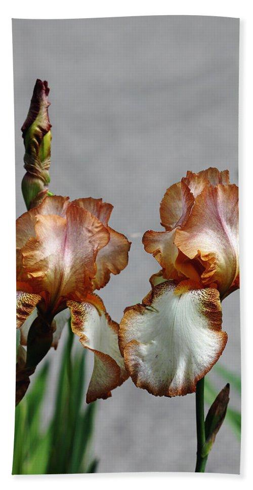 Iris Bath Sheet featuring the photograph Butterscotch Ripple by Debbie Oppermann