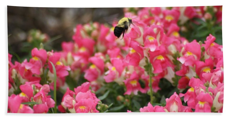 Bumblebee Hand Towel featuring the photograph Buzzing Around by John W Smith III