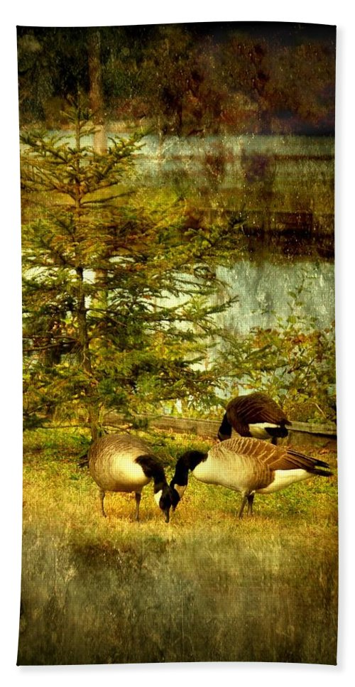 Autumn Bath Sheet featuring the photograph By The Little Tree - Lake Carasaljo by Angie Tirado