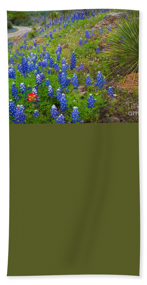 America Bath Sheet featuring the photograph Hill Country Yucca by Inge Johnsson