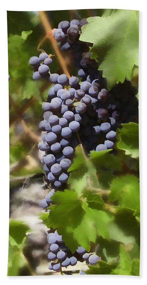 Cabernet Bath Towel featuring the photograph Cabernet by Kurt Van Wagner