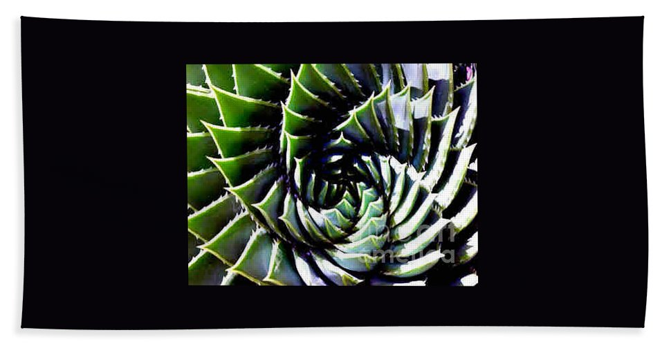 Cactus Hand Towel featuring the photograph Cactus by Dragica Micki Fortuna