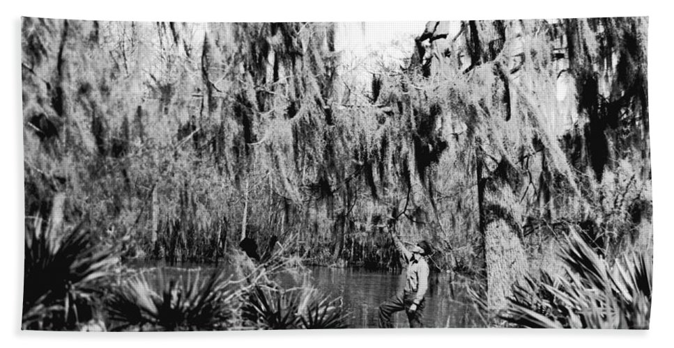 1920 Hand Towel featuring the photograph Cajuns Collecting Moss by Underwood Archives