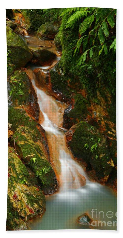 Azores Bath Towel featuring the photograph Caldeira Velha Park by Gaspar Avila